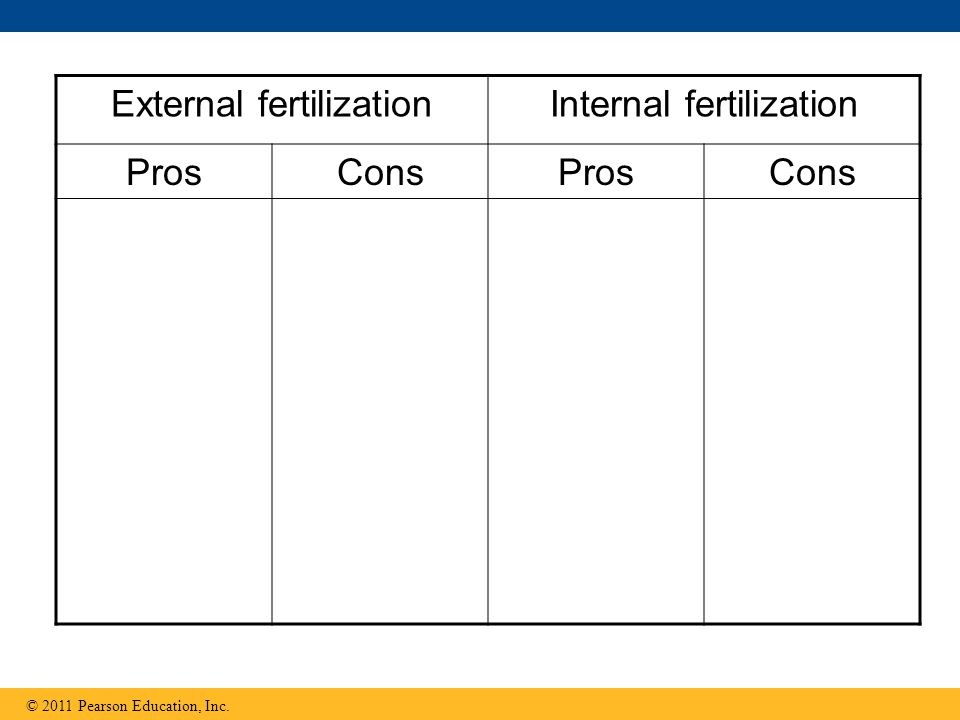 External fertilization Internal fertilization Pros Cons