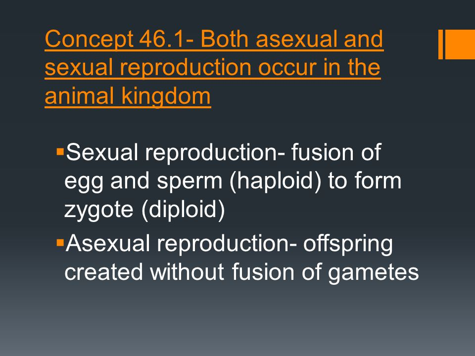 Concept 46.1- Both asexual and sexual reproduction occur in the animal kingdom
