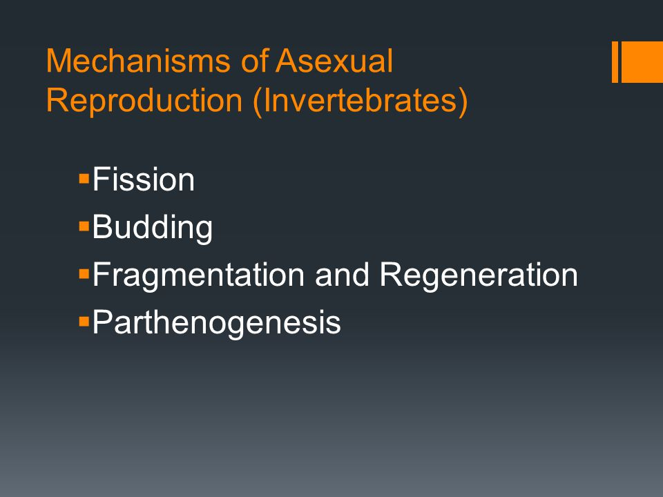 Mechanisms of Asexual Reproduction (Invertebrates)