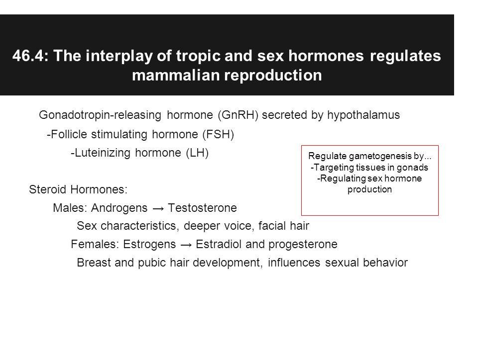 46.4: The interplay of tropic and sex hormones regulates mammalian reproduction