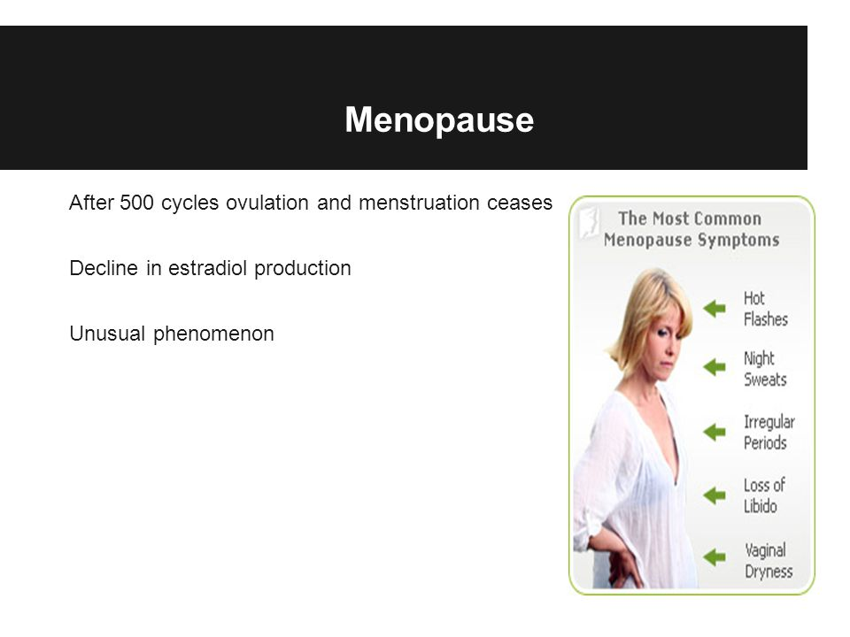 Menopause After 500 cycles ovulation and menstruation ceases