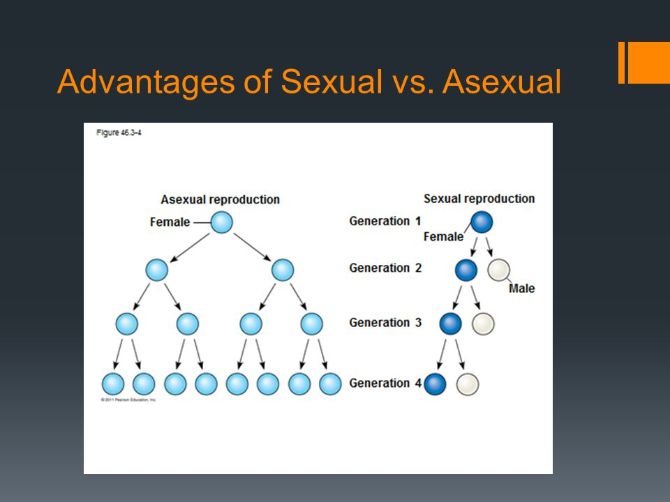 Advantages of Sexual vs. Asexual
