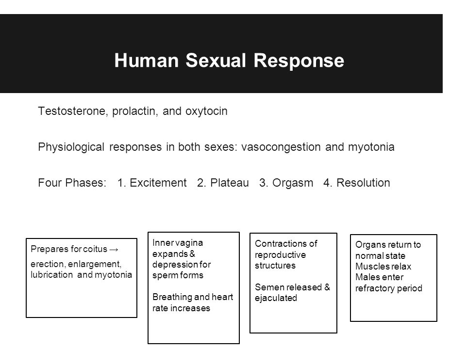 Human Sexual Response Testosterone, prolactin, and oxytocin