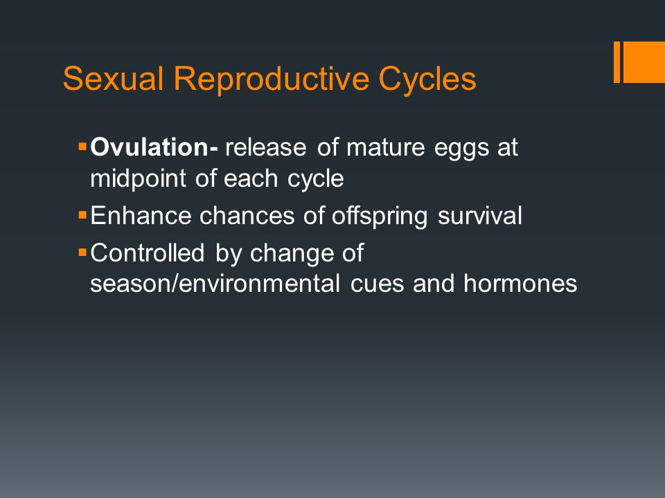 Sexual Reproductive Cycles