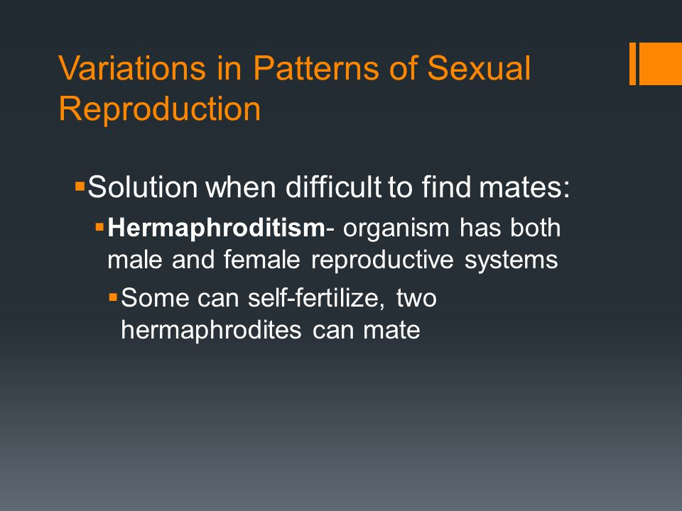 Variations in Patterns of Sexual Reproduction