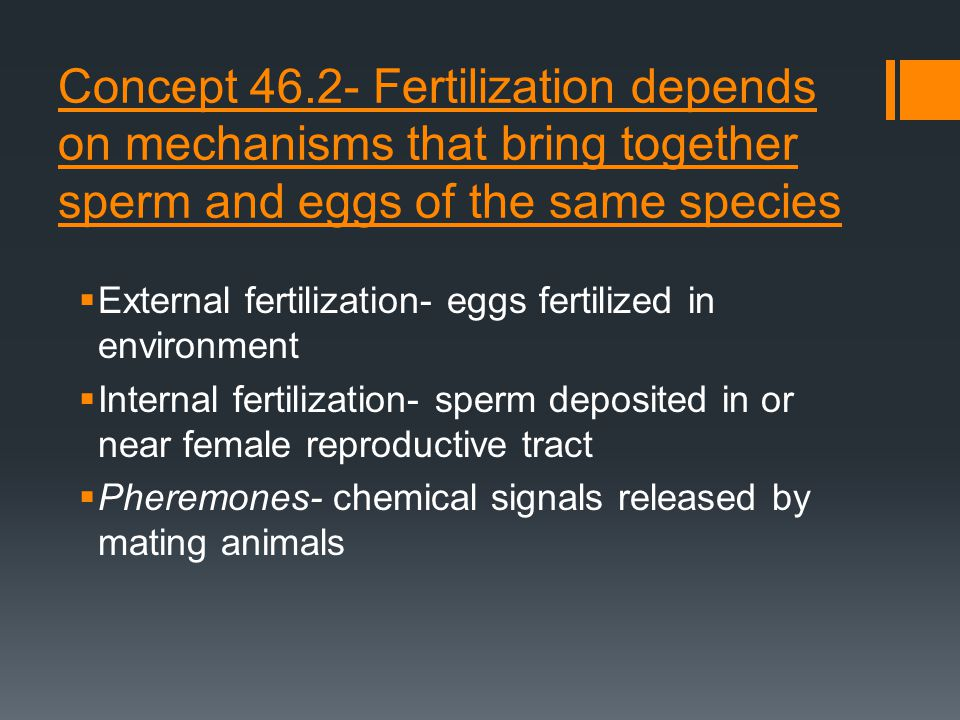 Concept 46.2- Fertilization depends on mechanisms that bring together sperm and eggs of the same species