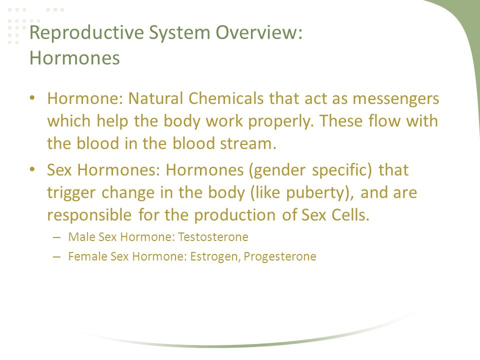 Reproductive System Overview: Hormones