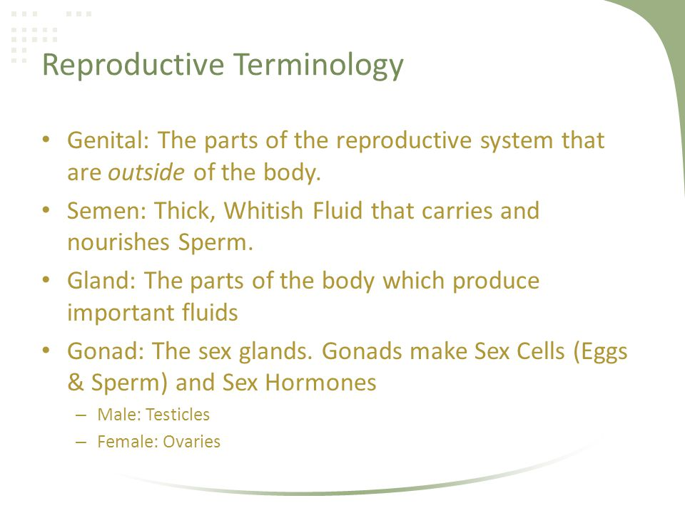 Reproductive Terminology