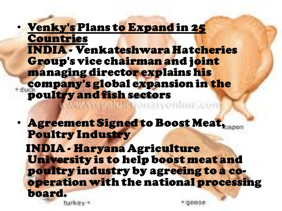 Venky s Plans to Expand in 25 Countries INDIA - Venkateshwara Hatcheries Group s vice chairman and joint managing director explains his company s global expansion in the poultry and fish sectors