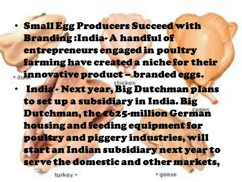 Small Egg Producers Succeed with Branding :India- A handful of entrepreneurs engaged in poultry farming have created a niche for their innovative product – branded eggs.