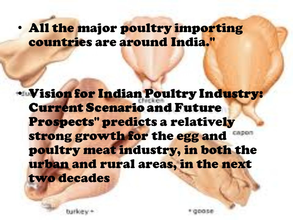 All the major poultry importing countries are around India.