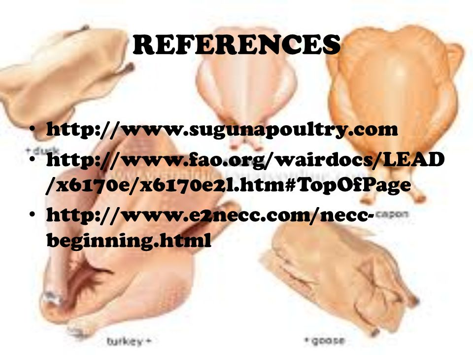 REFERENCES http://www.sugunapoultry.com