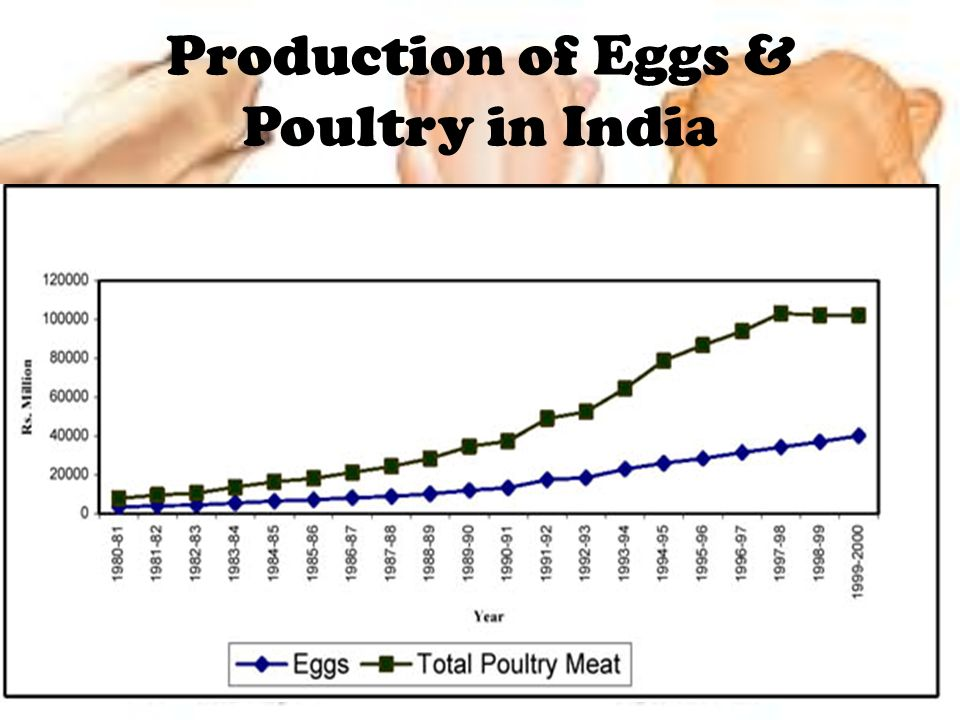 Production of Eggs & Poultry in India