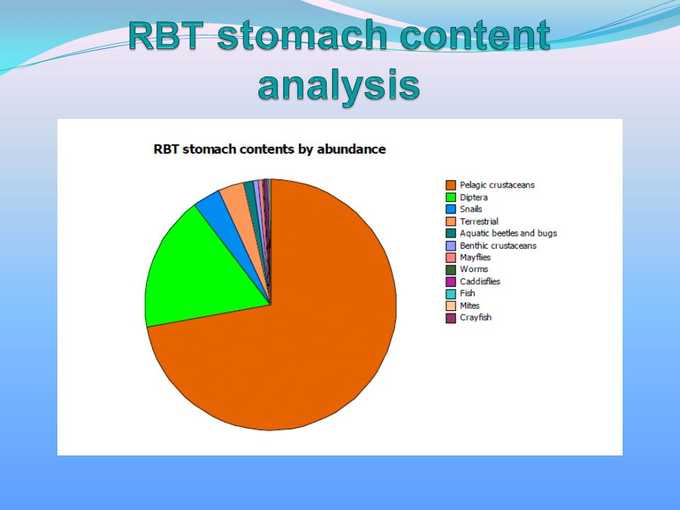 RBT stomach content analysis
