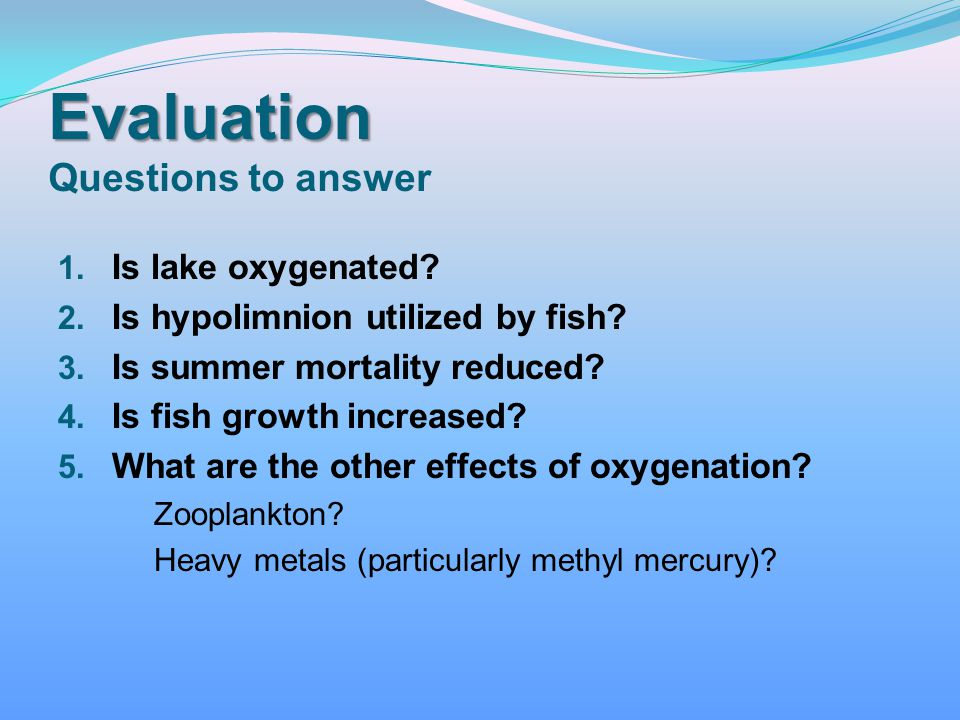 Evaluation Questions to answer
