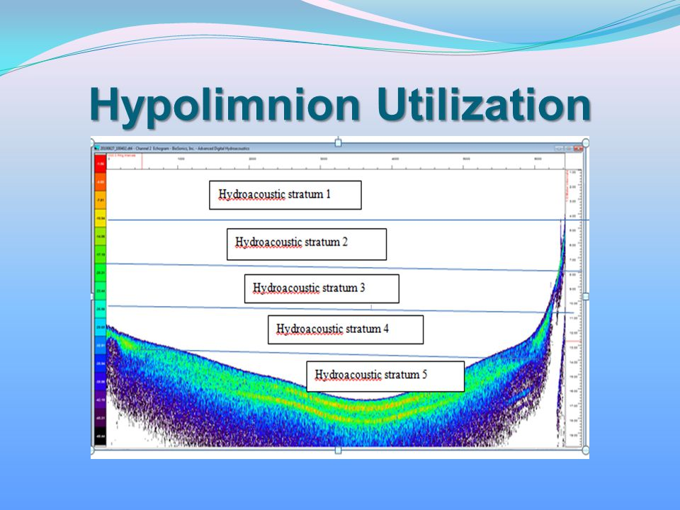 Hypolimnion Utilization