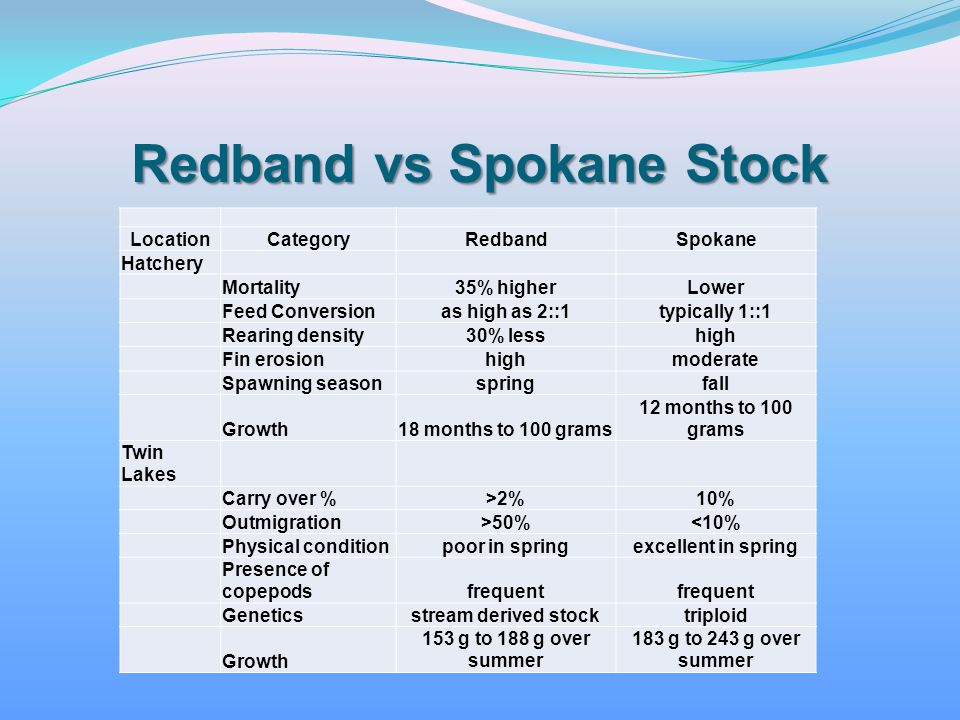 Redband vs Spokane Stock