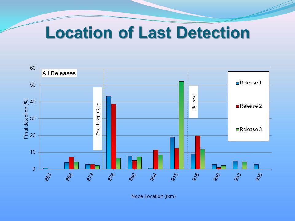 Location of Last Detection