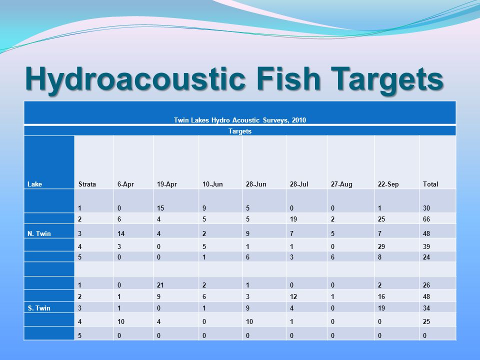 Hydroacoustic Fish Targets