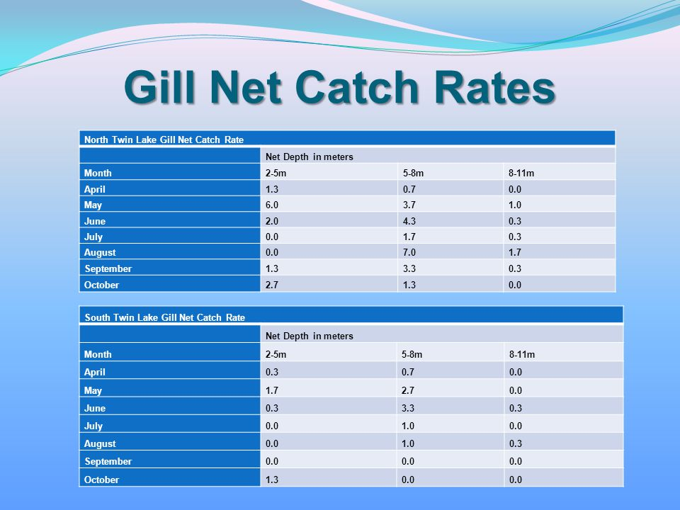 Gill Net Catch Rates North Twin Lake Gill Net Catch Rate