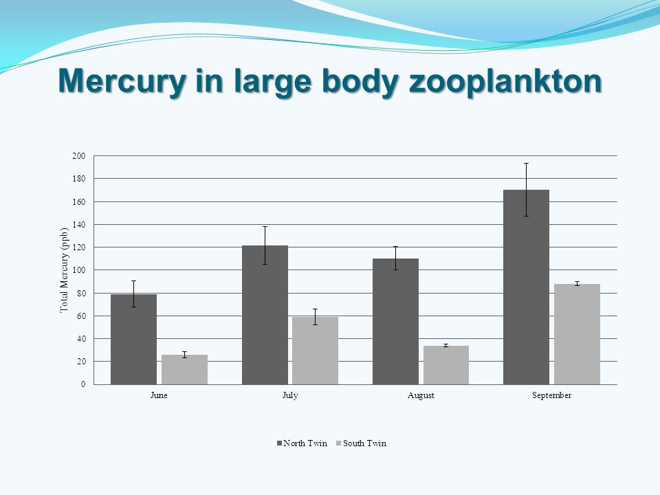 Mercury in large body zooplankton