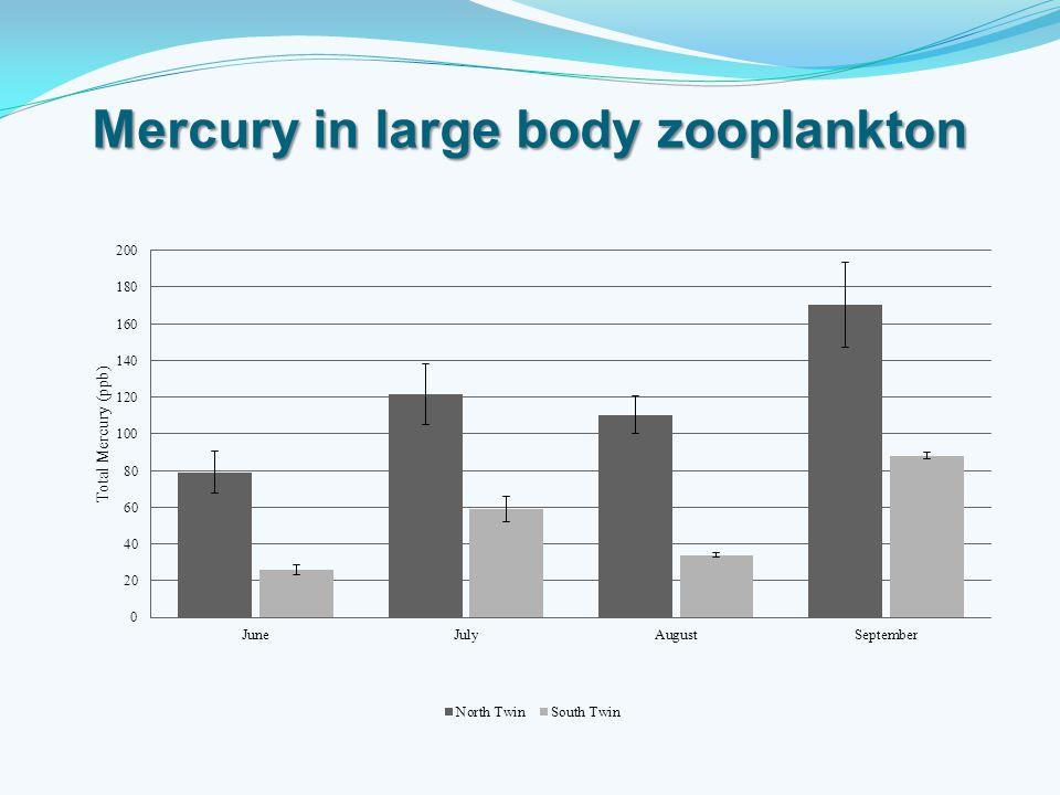 Mercury in large body zooplankton