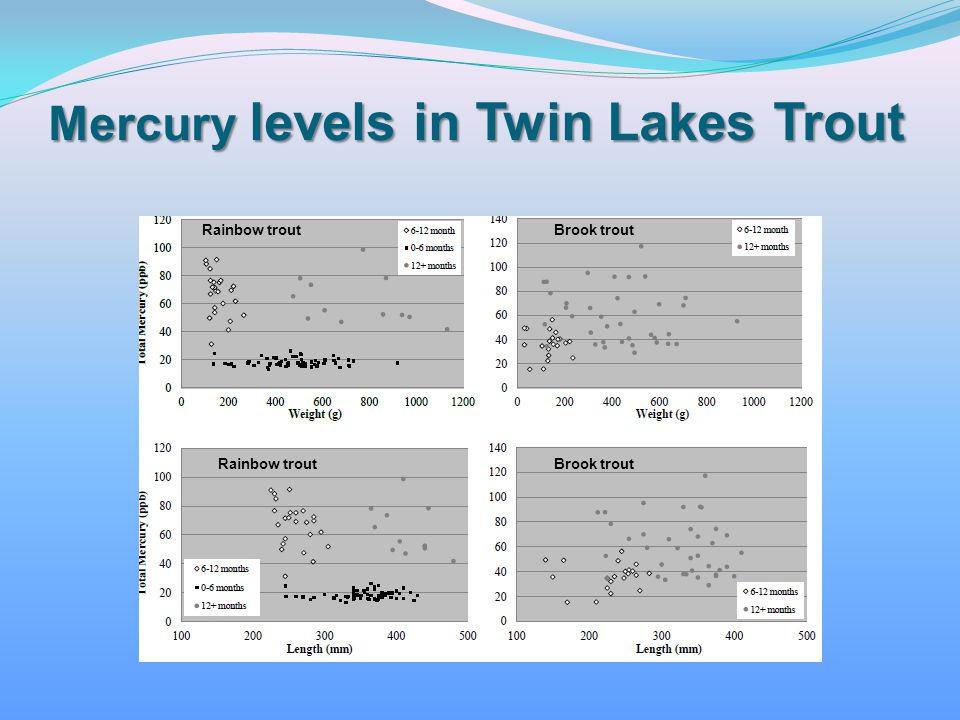 Mercury levels in Twin Lakes Trout
