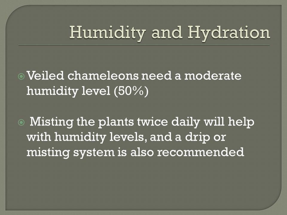 Humidity and Hydration