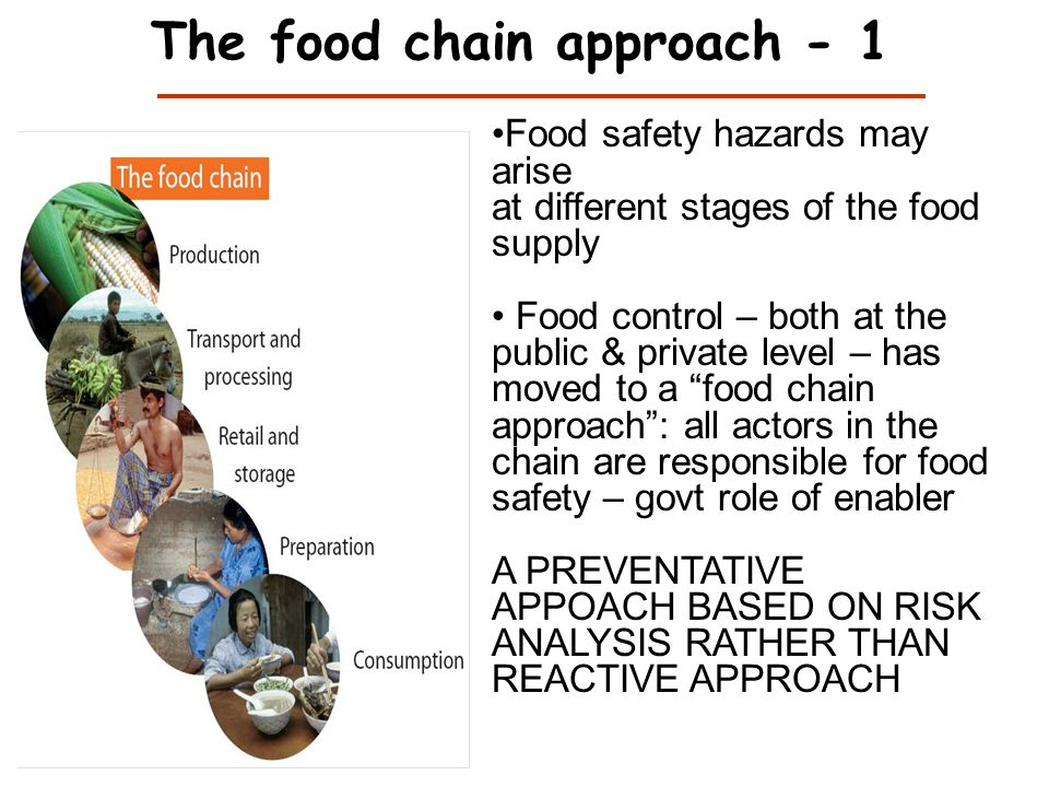 The food chain approach - 1