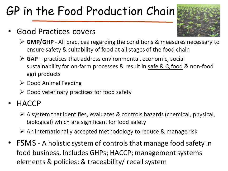 GP in the Food Production Chain
