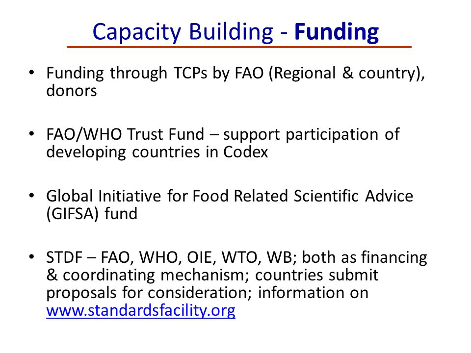 Capacity Building - Funding