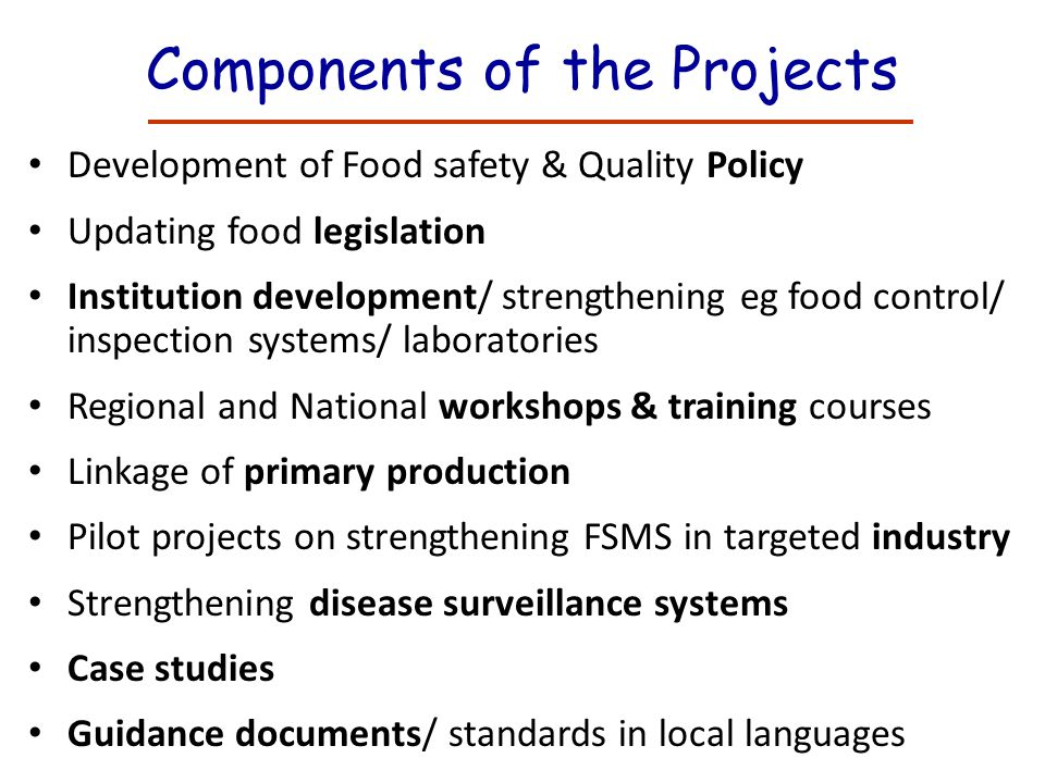 Components of the Projects