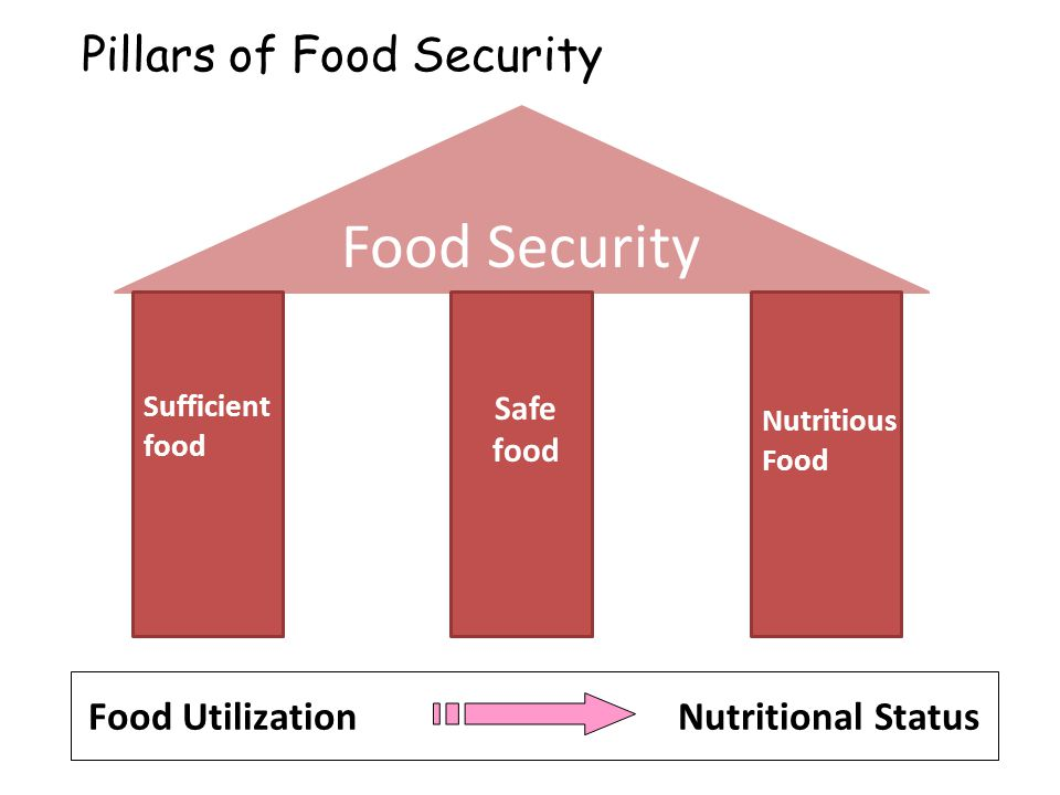 Food Utilization Nutritional Status