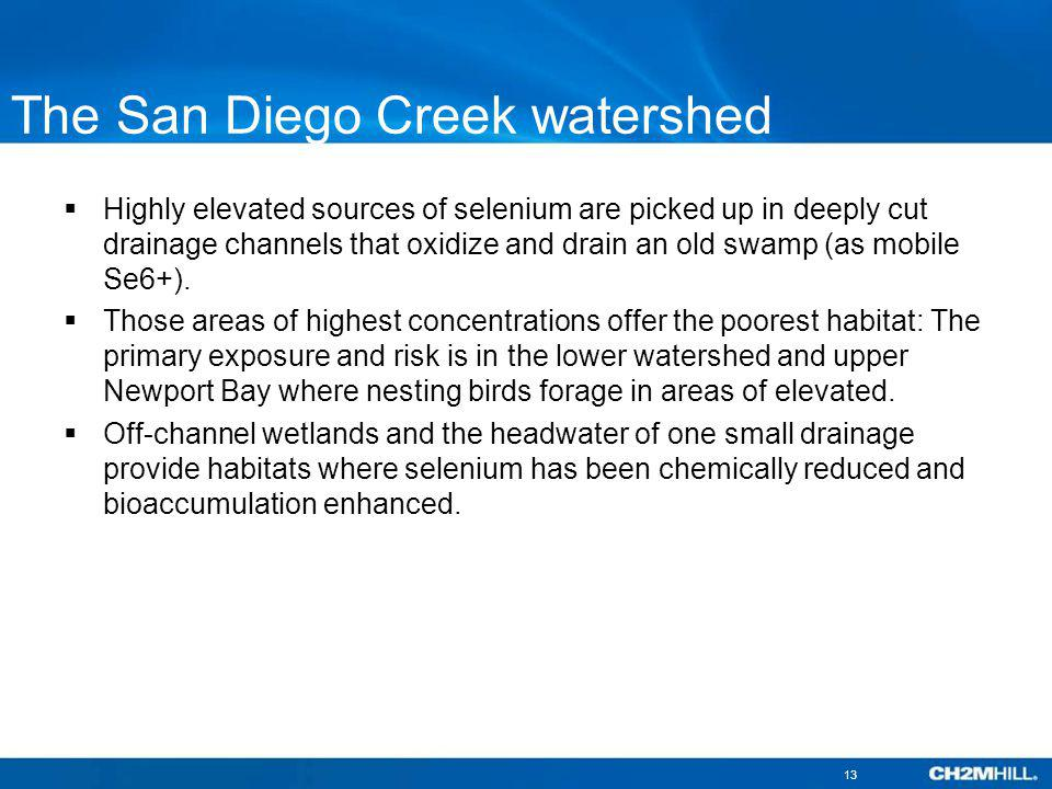 The San Diego Creek watershed