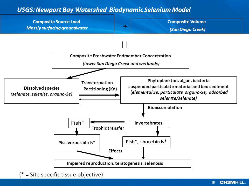  USGS: Newport Bay Watershed Biodynamic Selenium Model