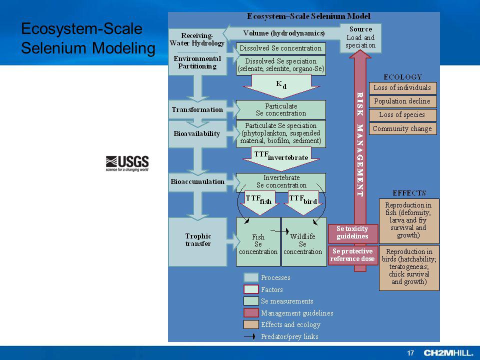 Ecosystem-Scale Selenium Modeling