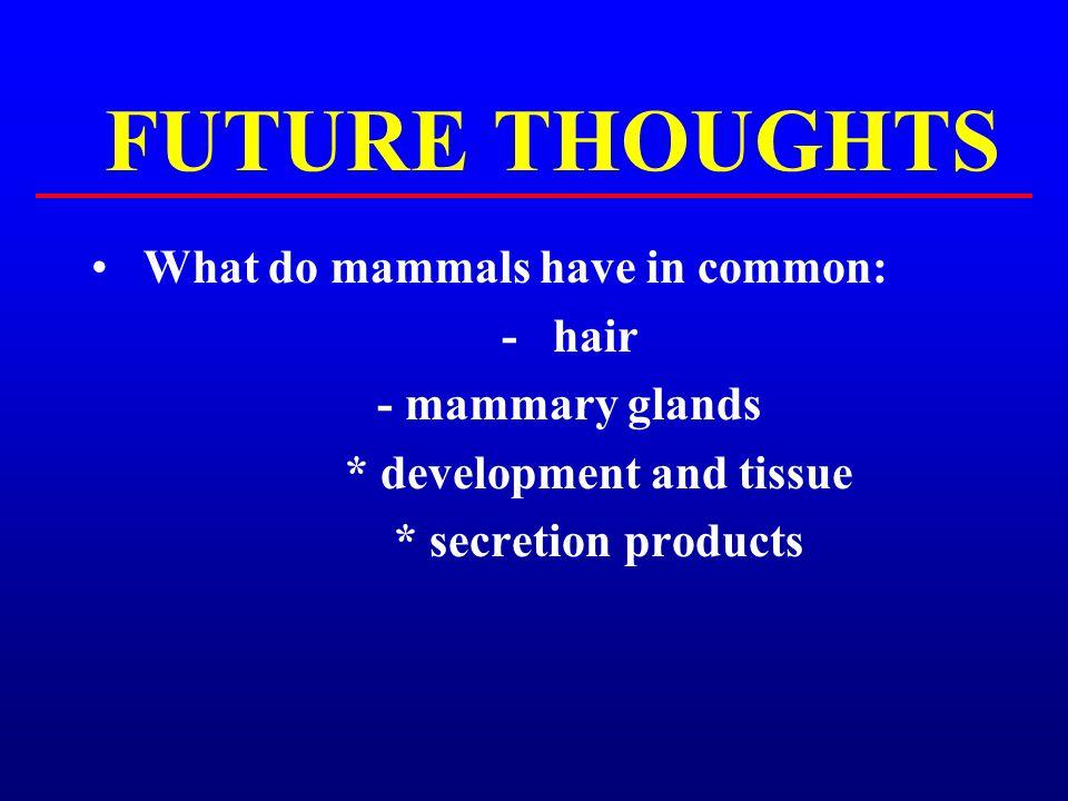 * development and tissue