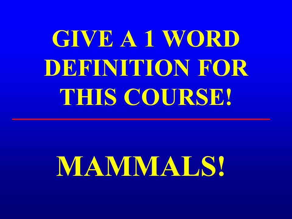 GIVE A 1 WORD DEFINITION FOR THIS COURSE!