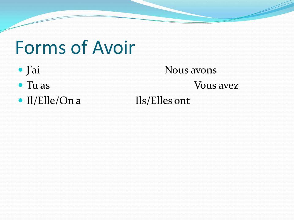 Forms of Avoir J'ai Nous avons Tu as Vous avez