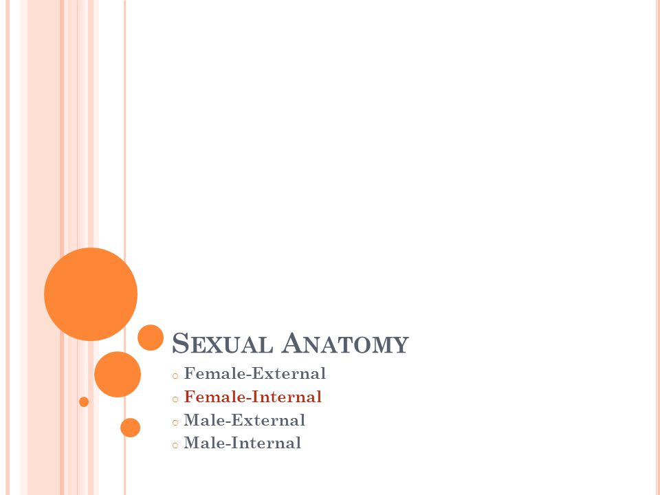 Female-External Female-Internal Male-External Male-Internal