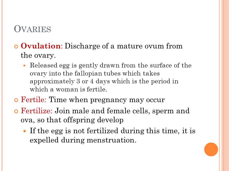 Ovaries Ovulation: Discharge of a mature ovum from the ovary.