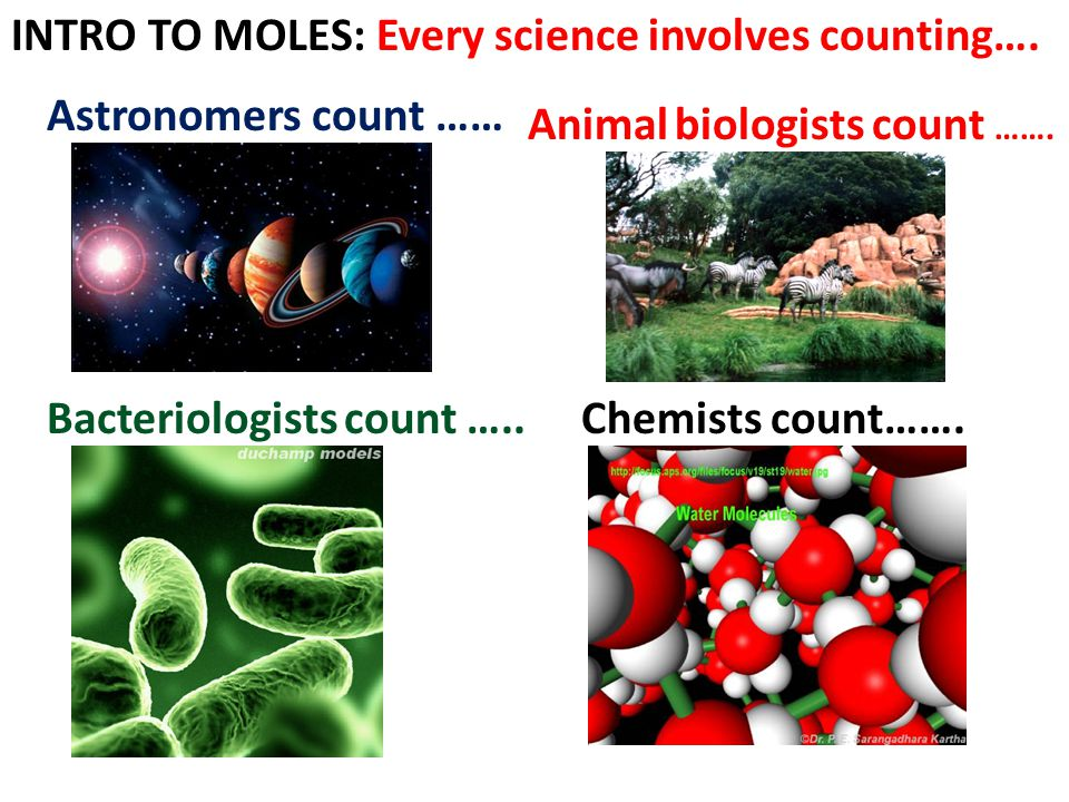 INTRO TO MOLES: Every science involves counting….