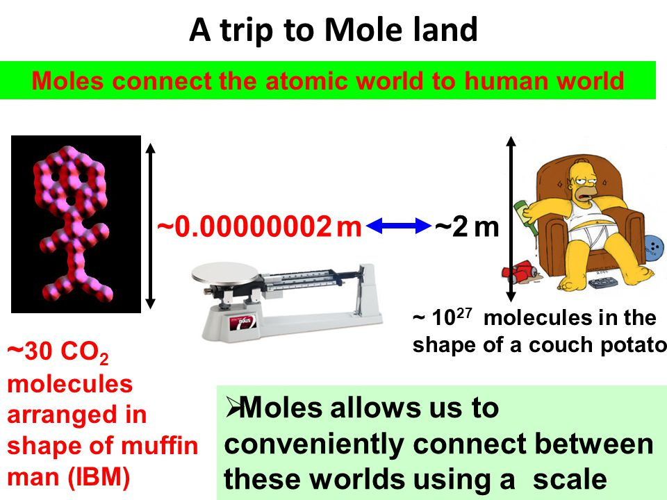 Moles connect the atomic world to human world