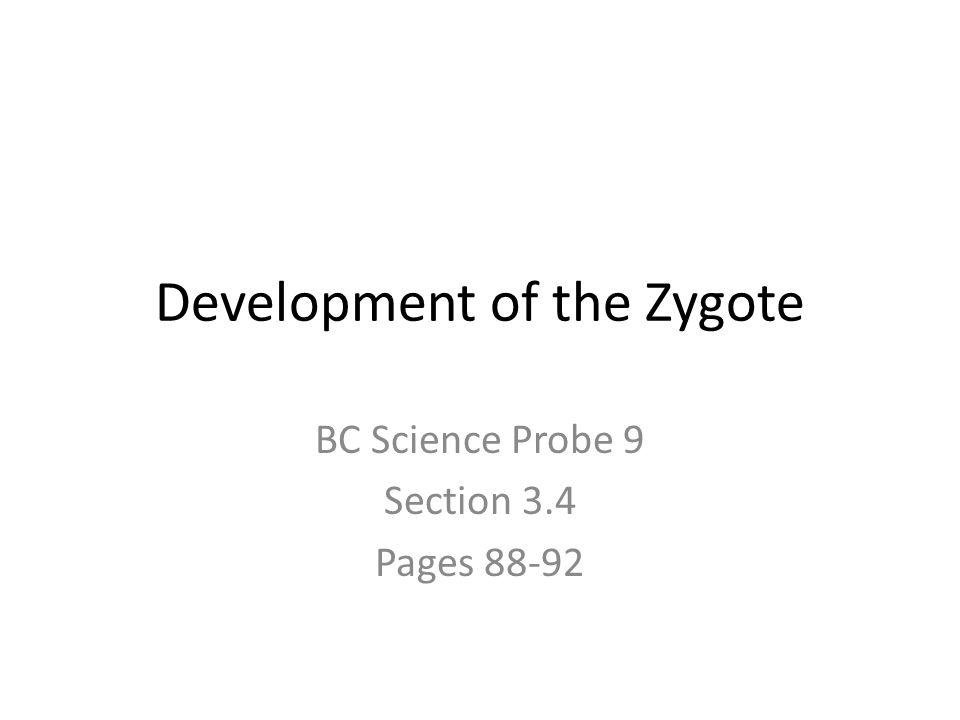 Development of the Zygote