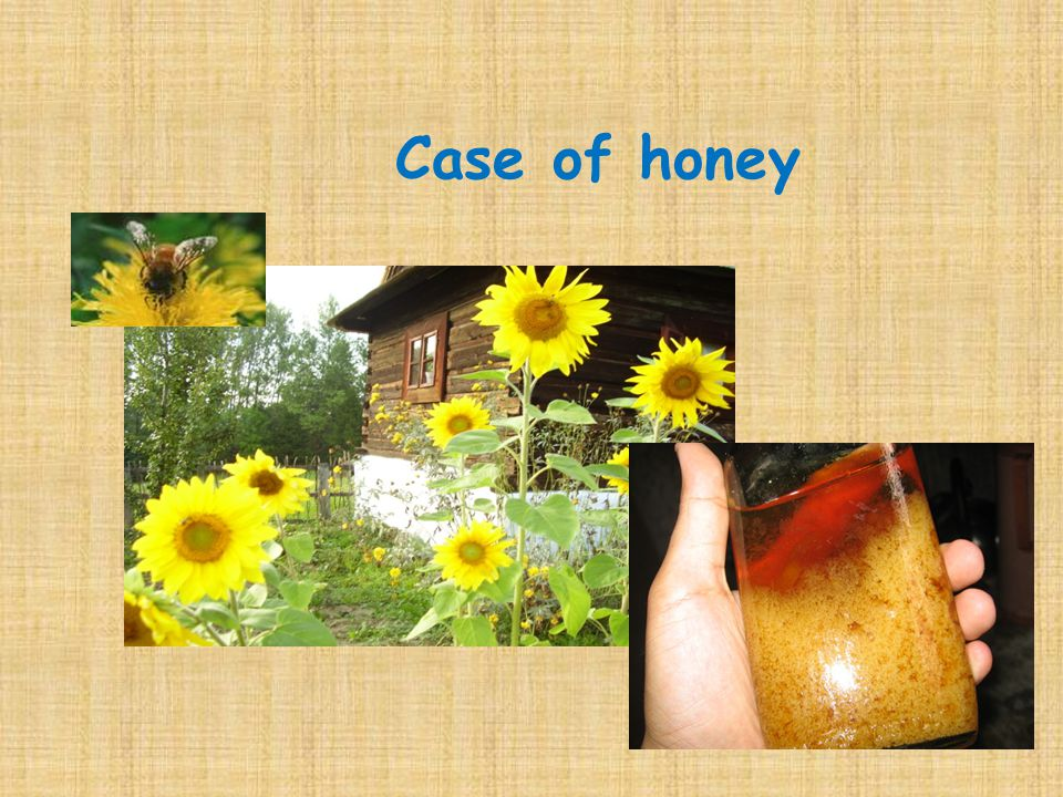 Case of honey