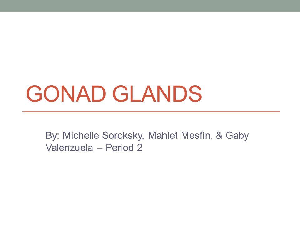 By: Michelle Soroksky, Mahlet Mesfin, & Gaby Valenzuela – Period 2