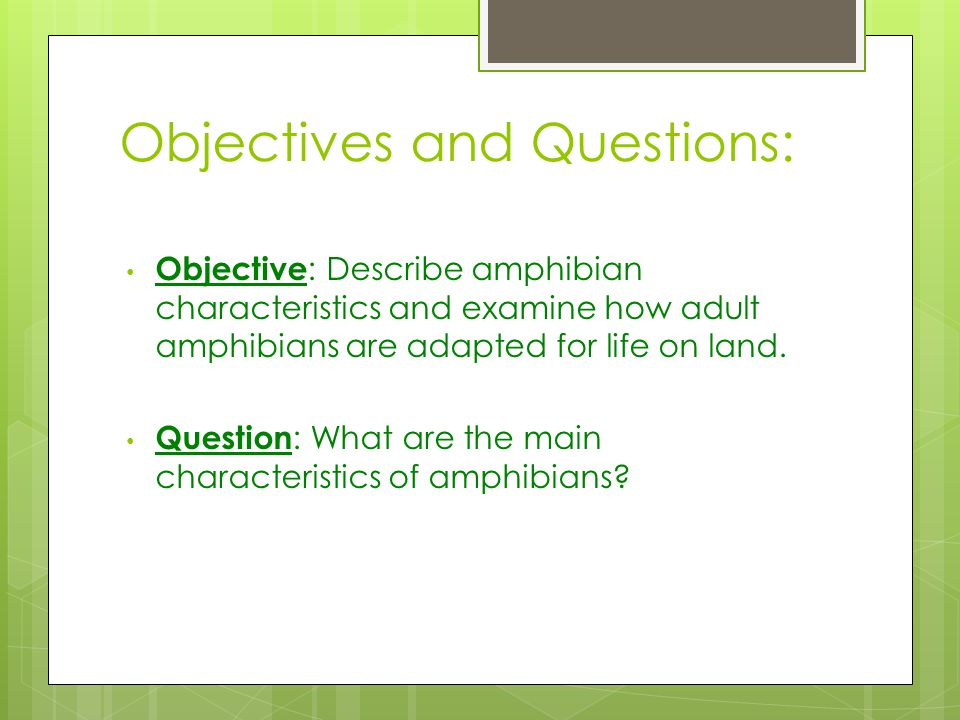 Objectives and Questions: