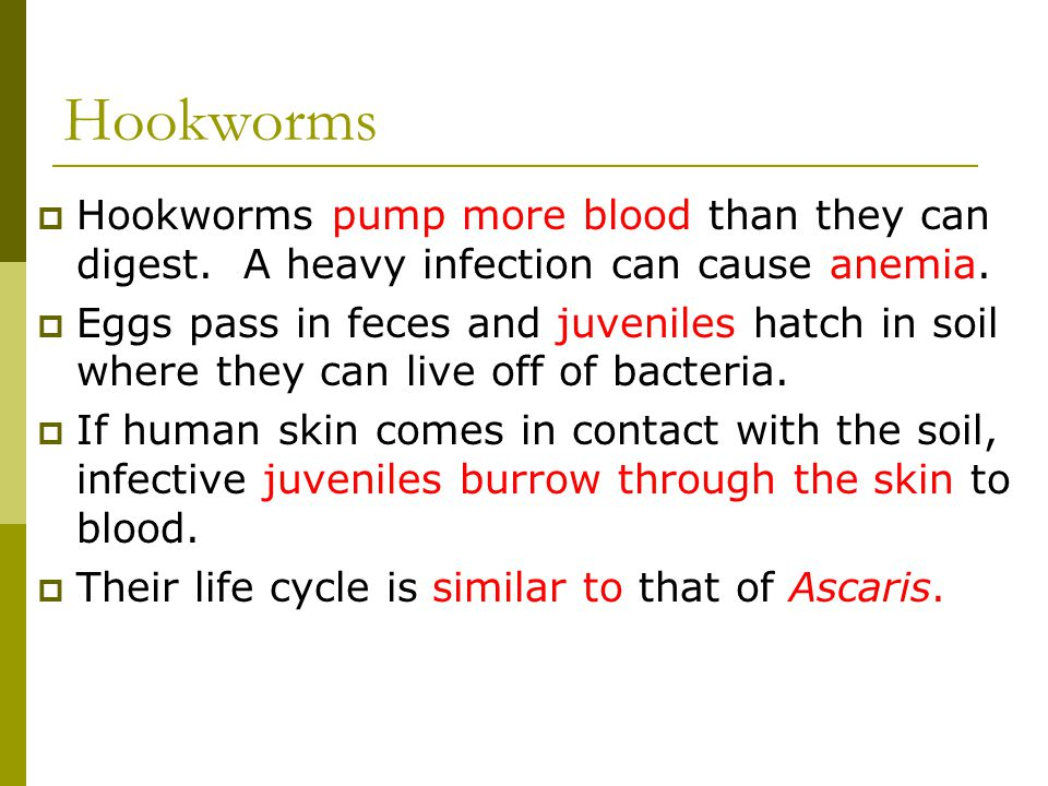 Hookworms Hookworms pump more blood than they can digest. A heavy infection can cause anemia.