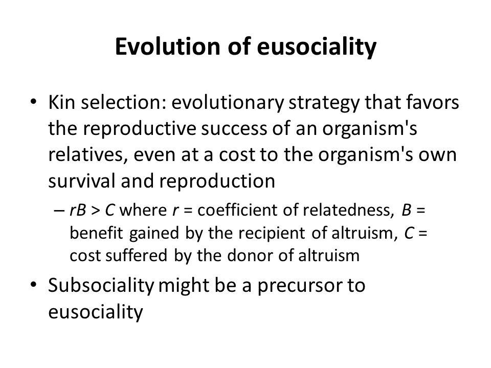 Evolution of eusociality