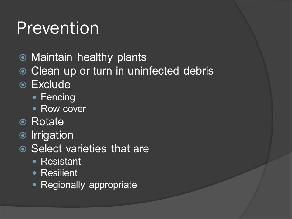 Prevention Maintain healthy plants